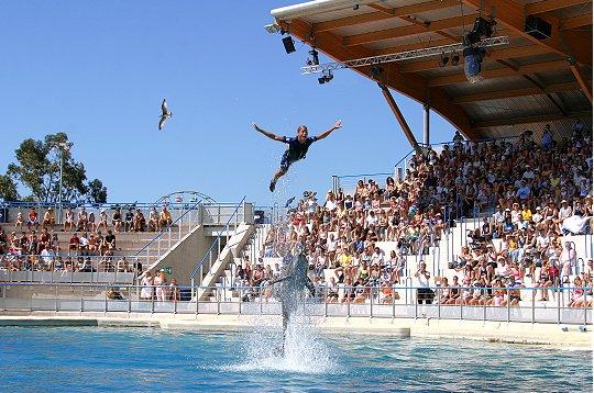 Marineland to Antibes