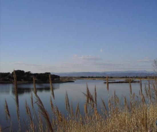 Villepey pond