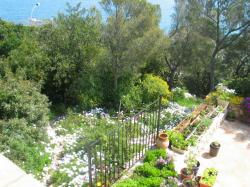 The view of the garden, in spring