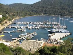 Port-Cros, take the boat from